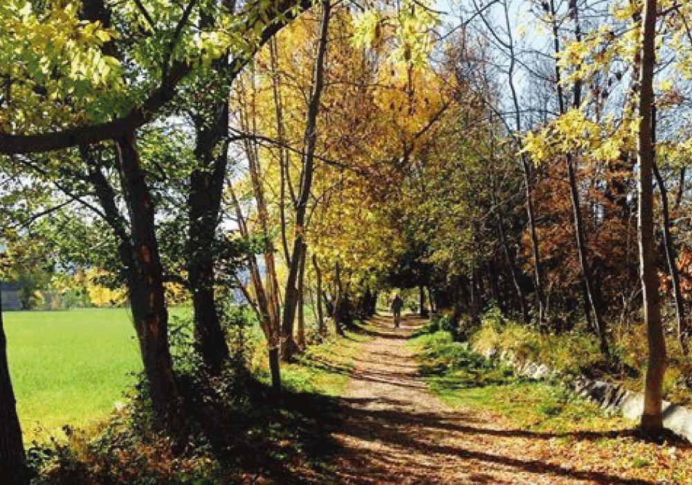 Camino de los enamorados Puigcerdà